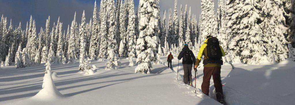 backcountry ski packing list