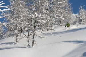 PNW backcountry ski