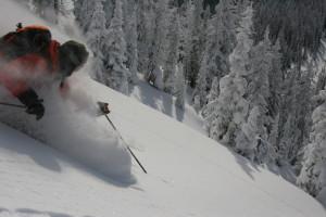 backcountry powder skiing
