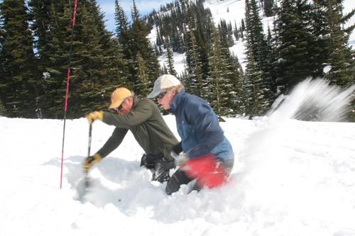 Strategic digging in an avalanche scenario