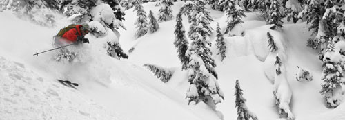 ski more powder