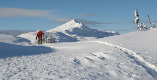 The Deaver tours mission ridge at Sol Mountain Touring, BC