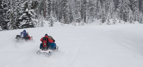 snowmobiles and the national forest