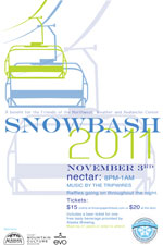 2011 snowbash poster
