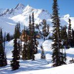 fairy meadows backcountry ski hut