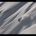 All In Ski movie