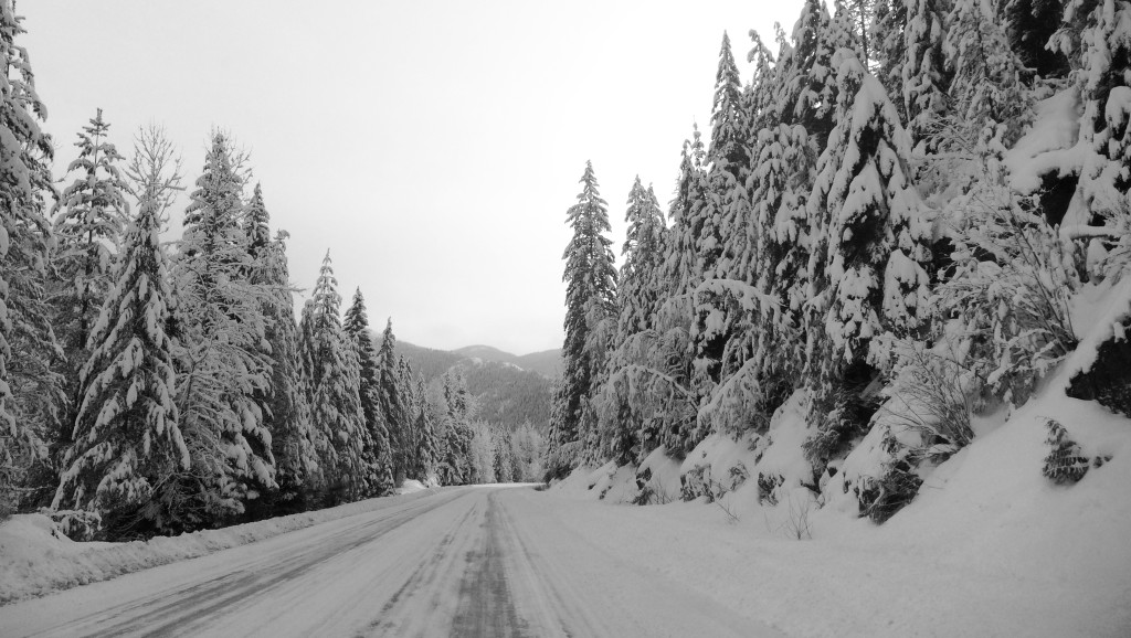 The Great White Highway