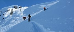 snow and avalanche workshops