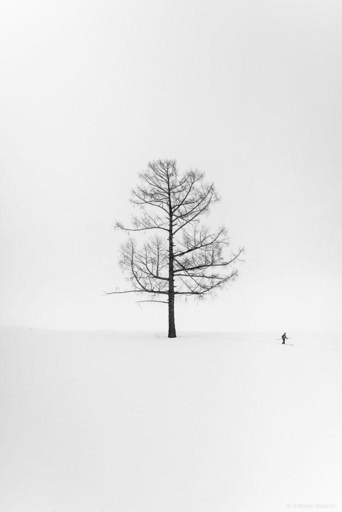 ski film a skier's journey