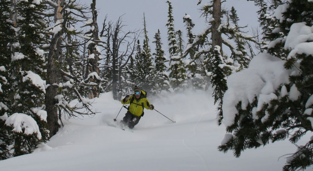 2017 ski reviews Editors' choice