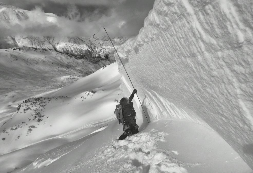 Dream Job Avalanche Forecaster