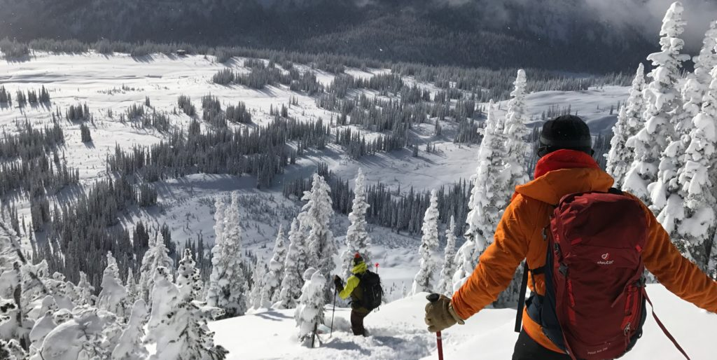 Deuter ski pack