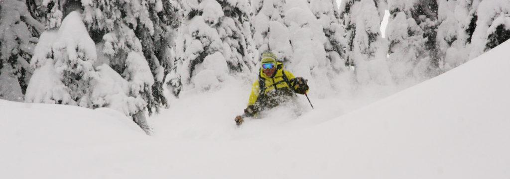 powder skiiing monashee