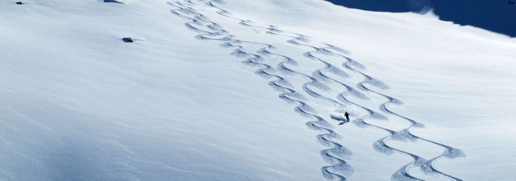 powder skiing tracks