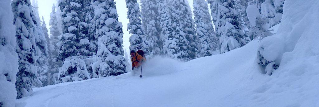 soft-shell backcountry ski pants