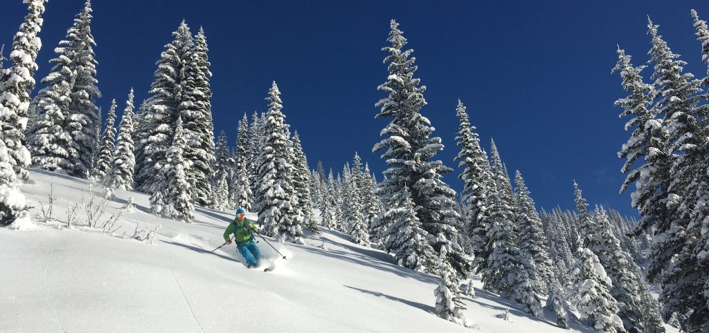 Ogso Skis - Couturier review