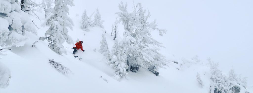 backcountry skier enjoying a la nina powder day - 2021-22 ski season forecast